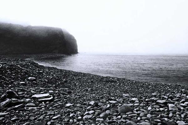 Fox Bay Fog (photograph copyright 2013 Arthur D. Marshall)