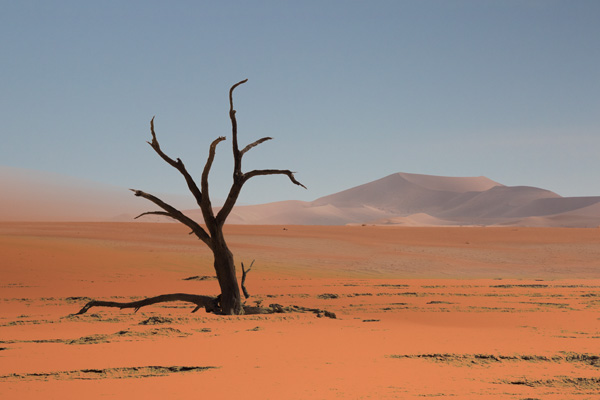Deadvlei (photograph copyright 2016 Arthur Marshall)